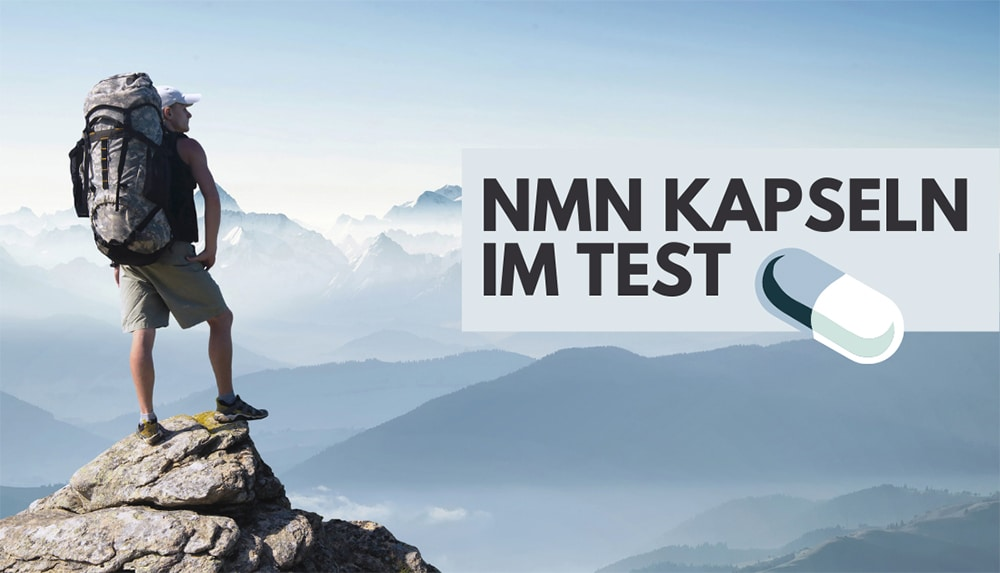 nmn supplement kapseln test